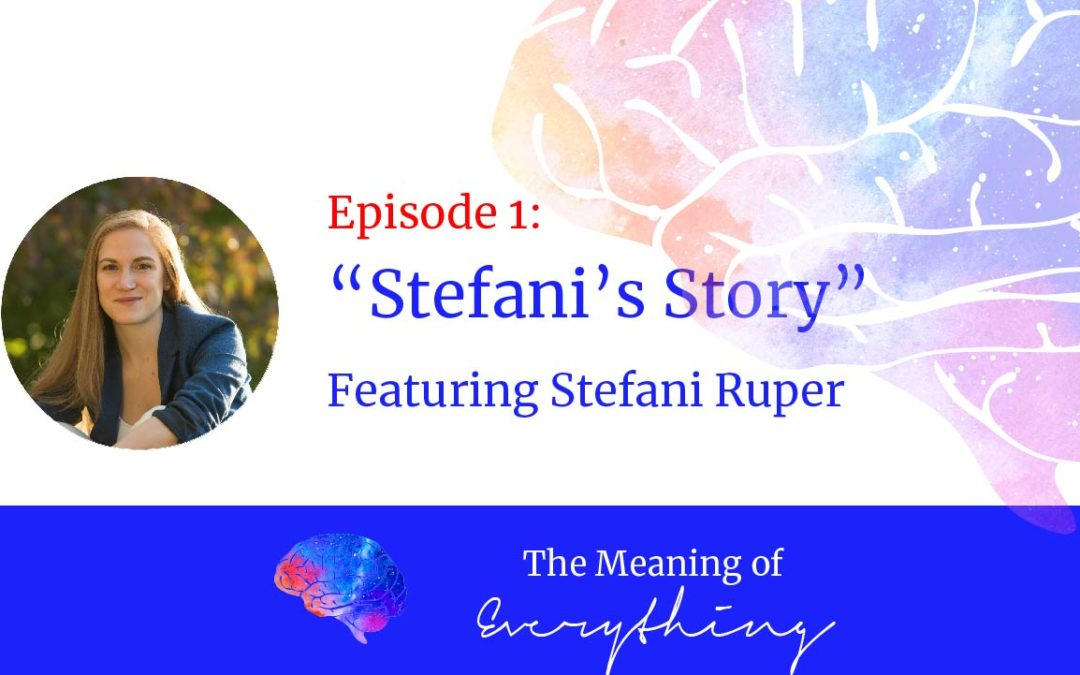 the meaning of everything 1 stefanis story