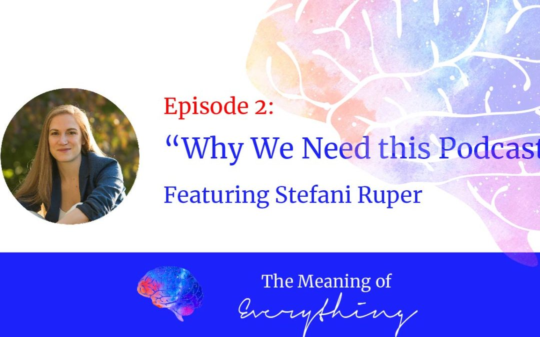 the meaning of everything 2 why we need this podcast stefani ruper