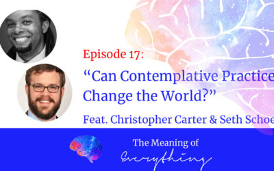 #17: Can Contemplative Practice Change the World? with Christopher Carter and Seth Schoen