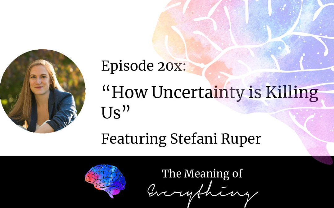 20x: How Uncertainty is Killing Us